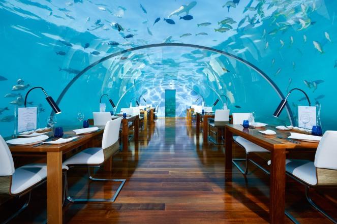 CONRAD MALDIVES RANGALI ISLAND_F&B_Ithaa Undersea Restaurant_Hero_credit Justin Nicholas_hi-res